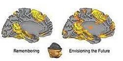 No solo el cerebro, también necesitas tu cuerpo pararecordar