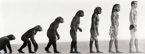 ¿Por qué nos ayudamos? Las bases evolutivas delaltruismo